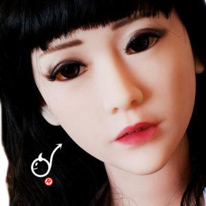 トルソ人形